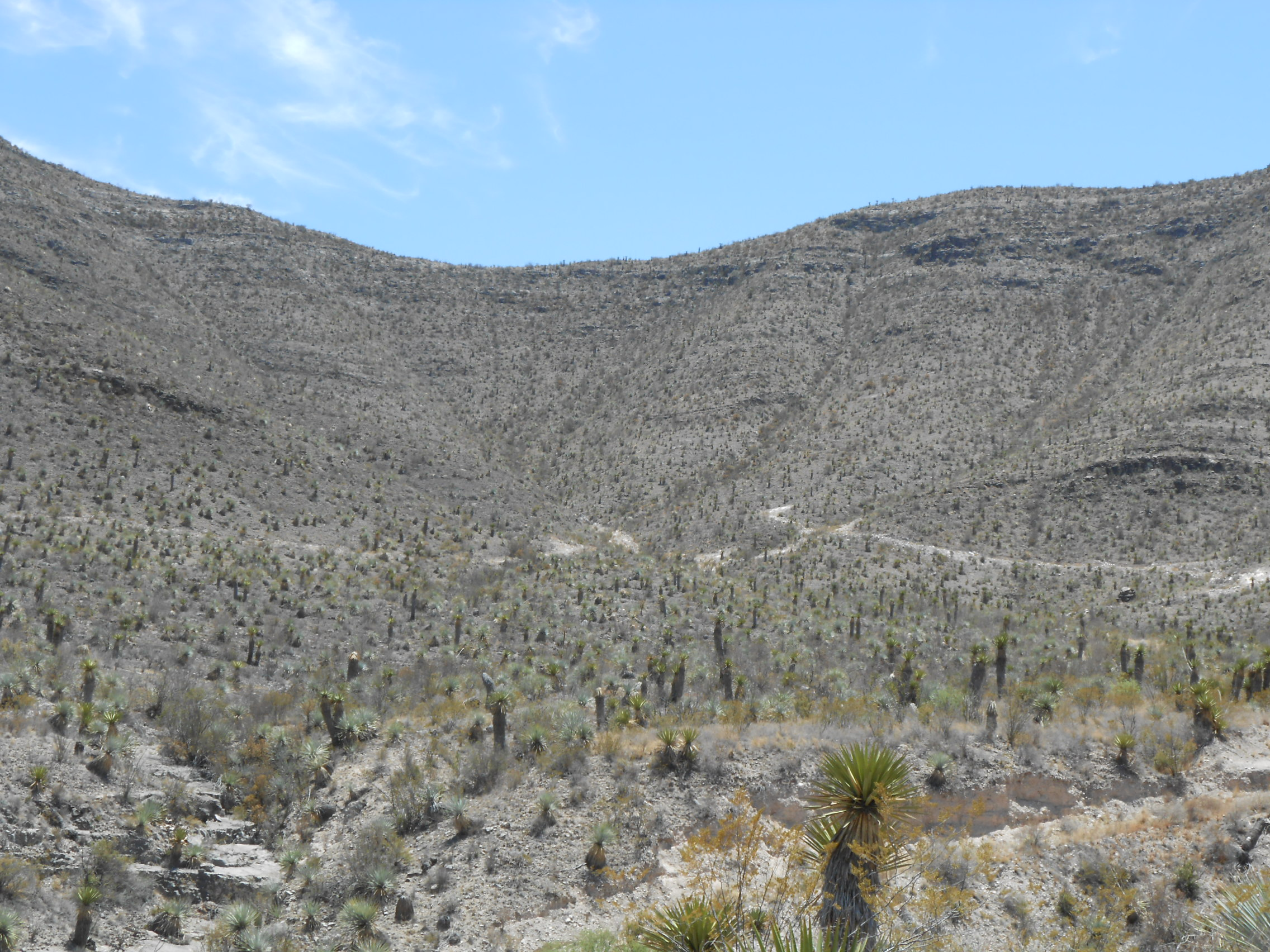 mines � minas de celestita sa de cv